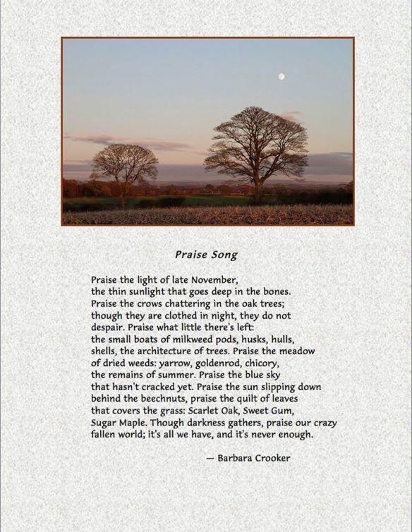 Nov. praise song 11610_10152460286897078_79007703250927739_n
