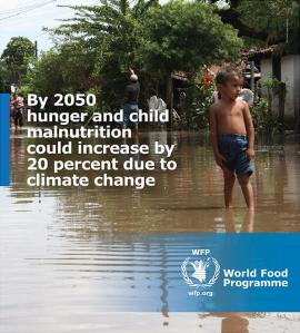 world hunger  1507773_468038436668404_2435027550126826136_n