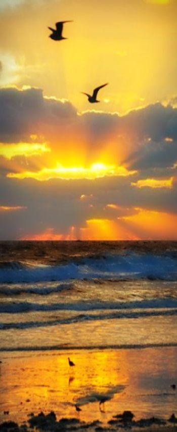 sunrise 7aca127ddbeaac2de912b6e711f7f69f